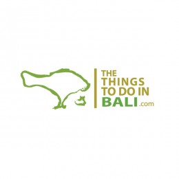 the things to do in bali : villa logo : logo design : bali logo design